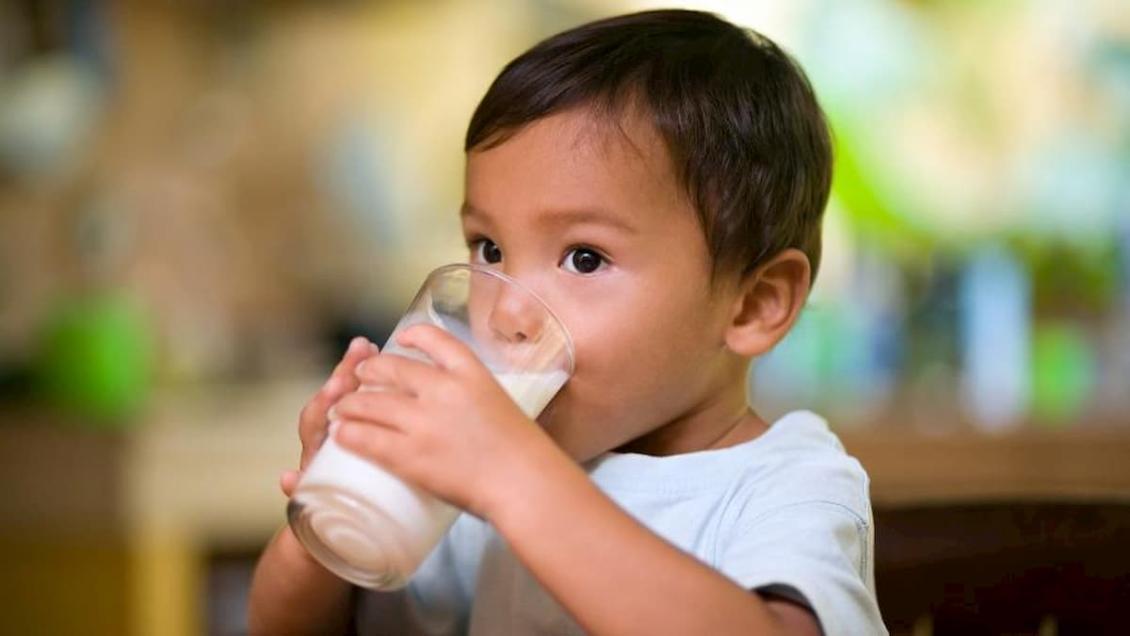 O leite é essencial para o crescimento das crianças e formação de seus ossos e dentes.