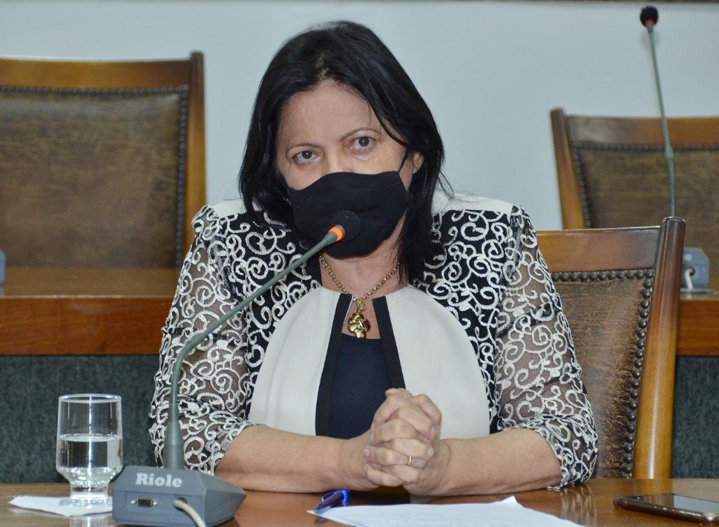 Deputada Valderez teve 11 requerimentos aprovados na sessão desta terça-feira